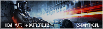 banner_BF2.png