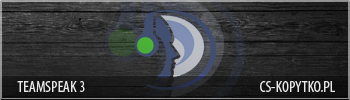 banner_ts3.png